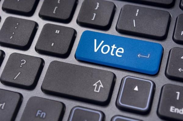 Все, що треба знати про оскарження онлайн-виборів до РГК